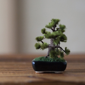 THE BONSAI 松